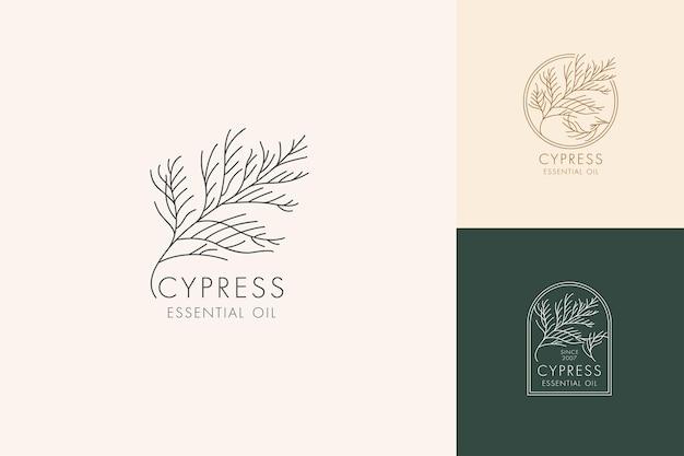 Wektor liniowy zestaw botanicznych ikon i symboli logo projektu cyprysowego dla olejku cyprysowego nat...