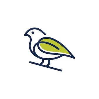 Wektor logo projektu ptaka.