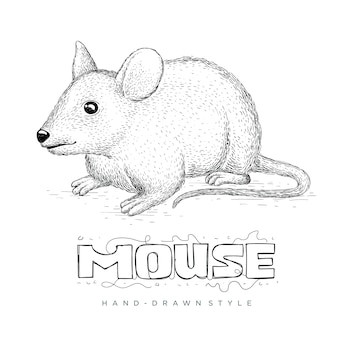 Wektor myszy w stylu wyciągnąć rękę. realistyczne ilustracje zwierząt