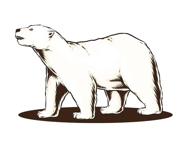 Wektor niedźwiedź polarny