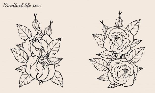 Wektor ornament rose zestaw ręcznie rysunek
