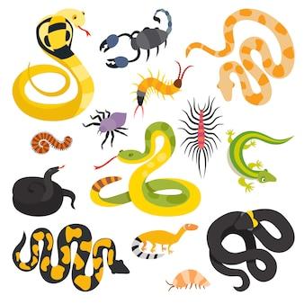 Wektor płaskie węże i inne niebezpieczeństwo zwierząt kolekcja na białym tle.