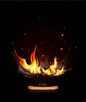Wektor płonący ogień w ciemności (noc)