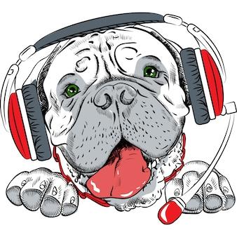 Wektor psa bullmastiff z zestawem słuchawkowym telefonu