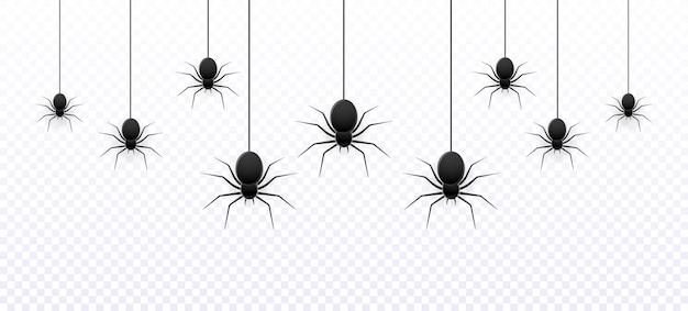 Wektor realistyczny na białym tle wzór z wiszącymi pająkami do dekoracji