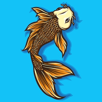 Wektor ryb koi