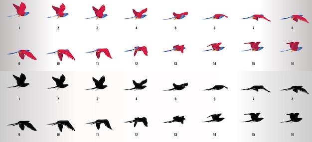 Wektor sekwencji animacji cyklu lotu ptaka