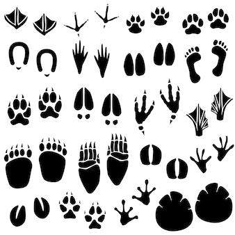 Wektor śladu zwierząt. zestaw śladu zwierzęcego w wektorze.