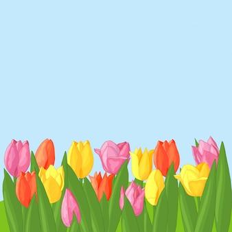 Wektor wielokolorowe tulipany na niebiesko