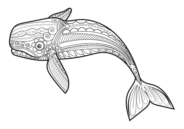 Wektor wieloryb dla dorosłych kolorowanki antystresowe