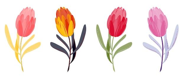 Wektor wiosenne lub letnie kwiaty zestaw płaskich tulipanów