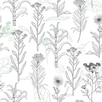 Wektor wzór z rysunkowymi roślinami