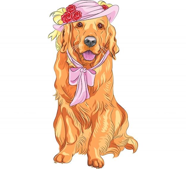 Wektor zabawna para psów labrador retriever w kapeluszach