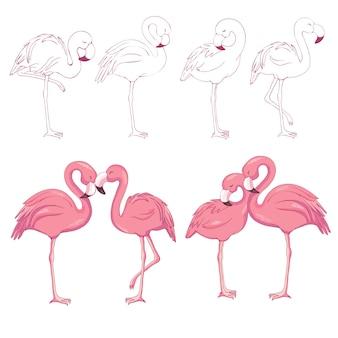 Wektor zarysowane flamingi