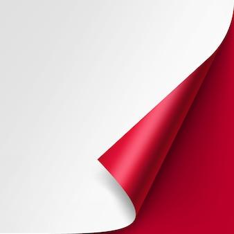 Wektor zawinięty róg białej księgi z cieniem na czerwono