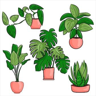 Wektor zbiory doniczkowych roślin doniczkowych w stylu cartoon płaskie. zestaw elementów do dekoracji domu, pokoju lub biura. pojedyncze elementy na białym tle.
