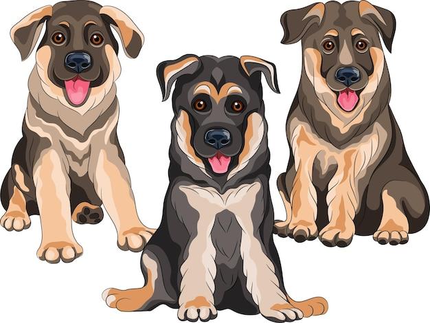 Wektor zestaw czarno-brązowy uśmiechający się szczenięta psa rasy owczarek niemiecki siedzi, na białym tle na białym tle