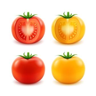 Wektor zestaw duże dojrzałe czerwone żółte zielone świeże pokrojone całe pomidory na białym tle