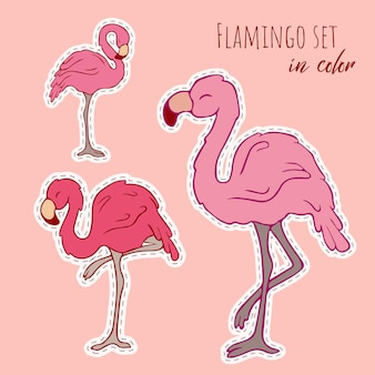 Wektor zestaw flamingów. wektor. flamingi. gryzmolić. kontur ptaka. kontur. różowy flaming.
