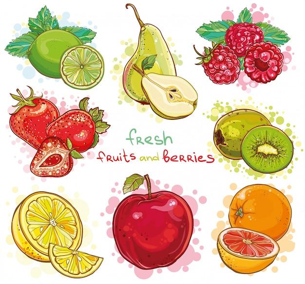 Wektor zestaw ilustracji z świeżych jasnych owoców i jagód. jabłko, kiwi, truskawka, malina, gruszka, cytryna, limonka, pomarańcza, grejpfrut, mięta.