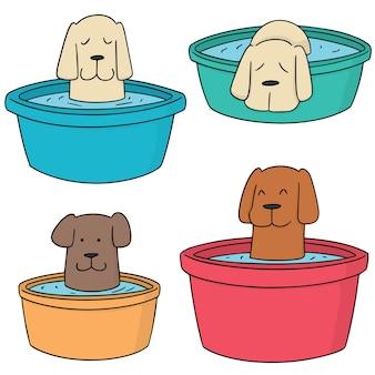 Wektor zestaw kąpieli psa