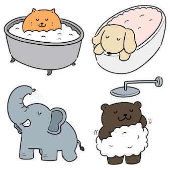 Wektor zestaw kąpieli zwierząt