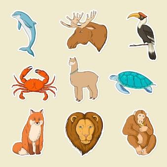 Wektor zestaw kolorowych naklejek dzikich zwierząt