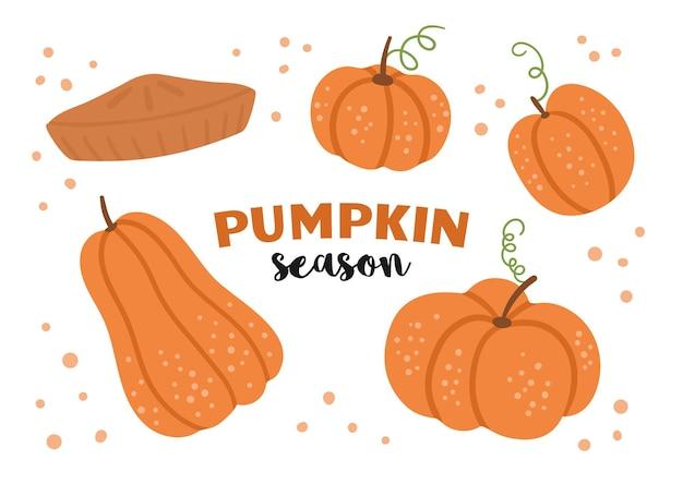 Wektor zestaw ładny dynie i ciasto jesienna kolekcja warzyw płaska pomarańczowa paczka do squasha