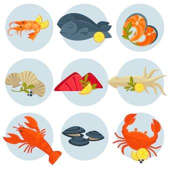 Wektor zestaw owoców morza. płaska konstrukcja