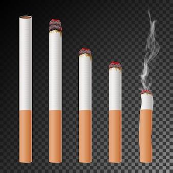 Wektor zestaw papierosów. realistyczny niedopałek papierosów. różne etapy spalania.