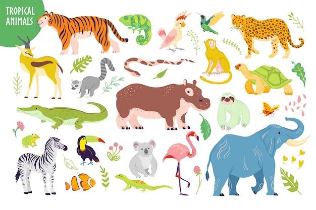 Wektor zestaw płaskie ręcznie rysowane zwierzęta tropikalne, ptaki, gady, rośliny na białym tle: tygrys, zebra, koala, aligator, flaming. dla dzieci alfabet, druk, tag, ilustracja itp.