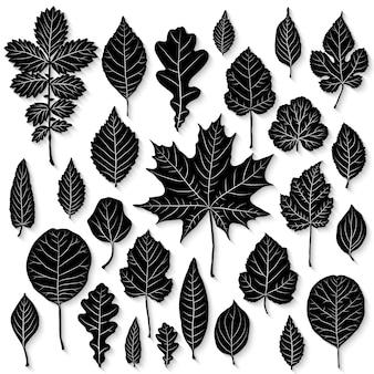 Wektor zestaw sylwetka liści