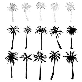 Wektor zestaw sylwetka palmy