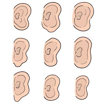 Wektor zestaw ucha