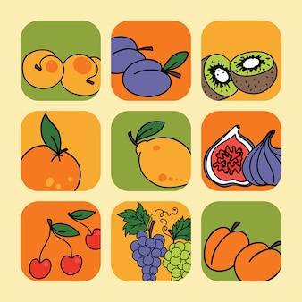 Wektor zestaw z ikonami owoców