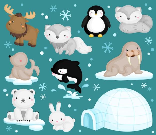 Wektor zestaw zwierząt arktycznych