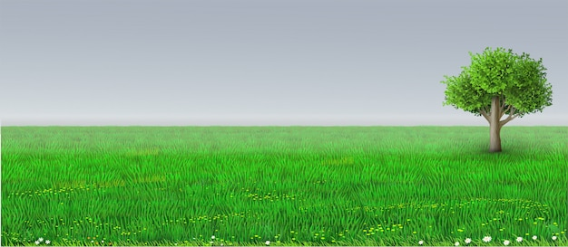 Wektor zielony horyzont tle drzewa