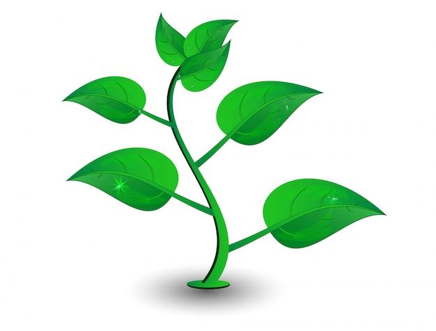 Wektor zielony płatek