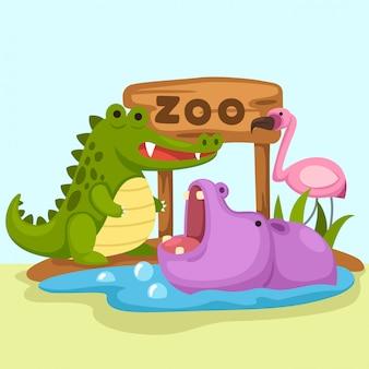 Wektor zoo zwierząt