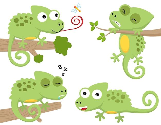 Wektorowa kreskówka ustawiająca śmieszny kameleon