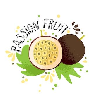 Wektorowa ręka rysuje barwioną pasyjną owocową ilustrację.