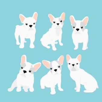 Wektorowe ilustracje ustawiać śliczny mały francuski buldog w różnych pozycjach. zabawny szczęśliwy szczeniak. francuskiego buldoga szczeniaka kolekcja w kreskówki mieszkania stylu na błękitnym tle.