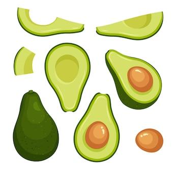 Wektorowy ustawiający kolorowa połówka, plasterek i cały świeży avocado. wegańskie jedzenie wektorowe ikony w modnym stylu cartoon. koncepcja zdrowej żywności.