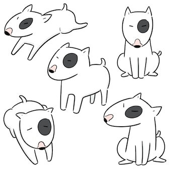 Wektorowy ustawiający pies, bull terrier