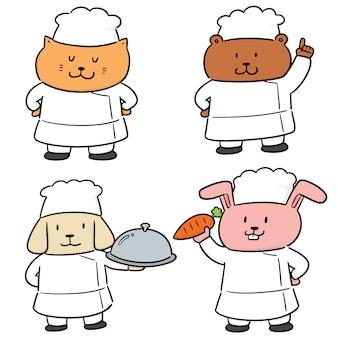 Wektorowy ustawiający zwierzęcy szef kuchni