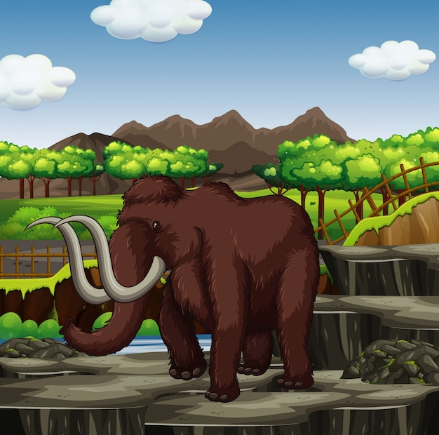 Wełnisty mamut w parku