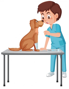 Weterynarz pomaga psu