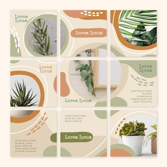 Wewnątrz rośliny instagram puzzle rss