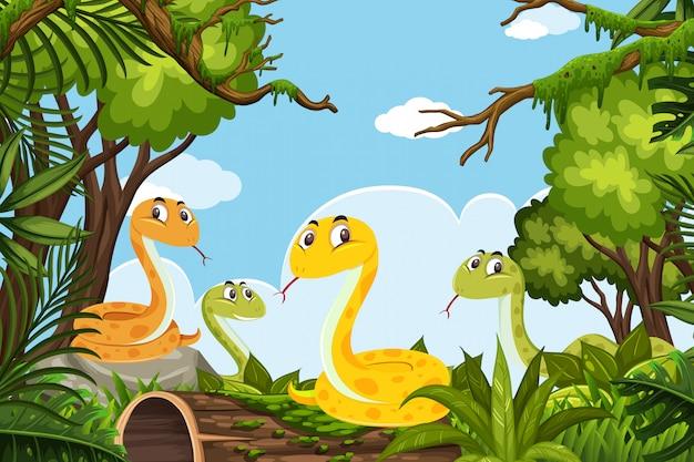 Węże w scenie dżungli