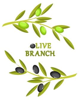 Wianek z gałęzi oliwnych